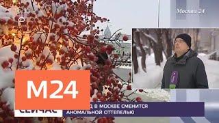 Смотреть видео Снегопад в Москве сменится аномальной оттепелью - Москва 24 онлайн