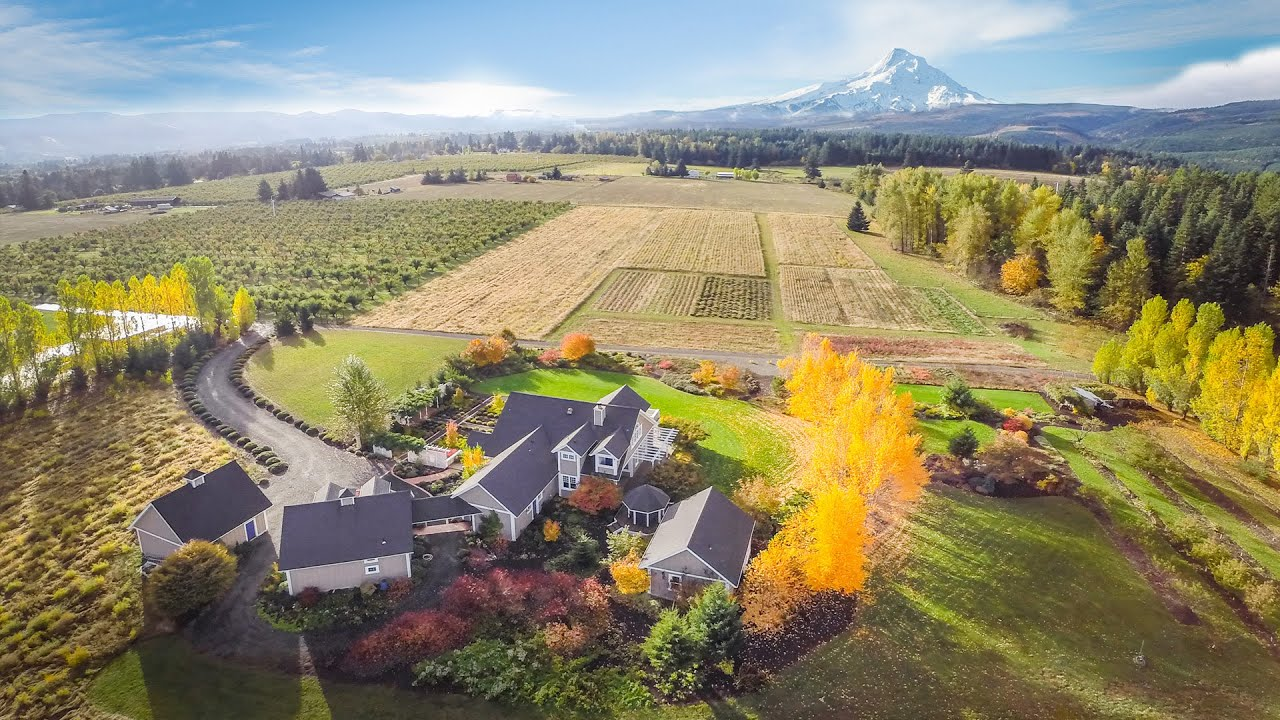 mount hood parkdale chat Apply to the best driving jobs in hood river we'd love to chat with you about becoming part of our daughter's loving driving jobs in mount hood parkdale, or.
