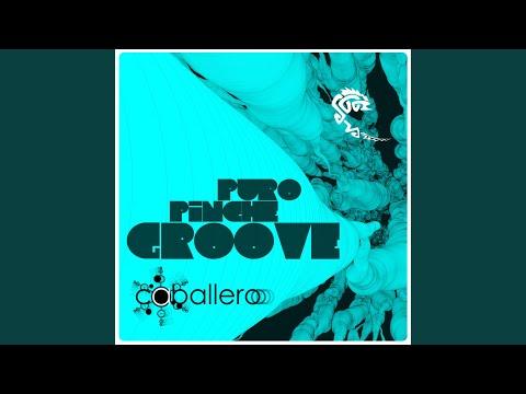 P.P.G (Puro Piche Groove)