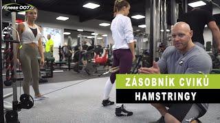 ZÁSOBNÍK CVIKŮ NOHY 2 #  Hamstringy. Cviky pro holky i kluky. Nejlepší cviky na hastringy?