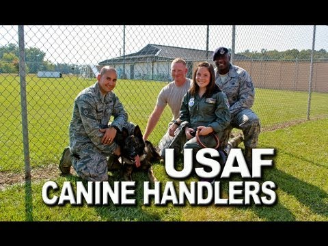 in-their-shoes-|-on-the-job-with-usaf-canine-handlers