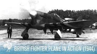 British RAF Hawker Tempest Fighter Plane in Action (1944) | British Pathé