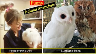 Funny Animal Snapchats That Will Make You Laugh Or At Least Smile Part 2