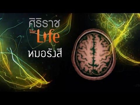 ศิริราช The Life [by Mahidol] ซีรีส์ เจาะ DNA หมอ ตอน หมอรังสี