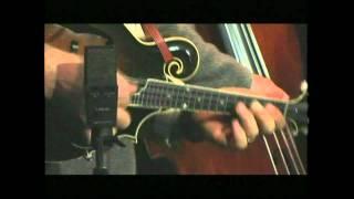 David Grier - Wheel Hoss