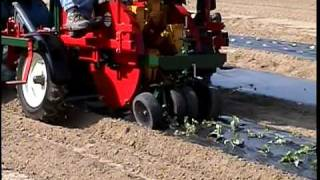 Mechanical Transplanter Company Model 948T