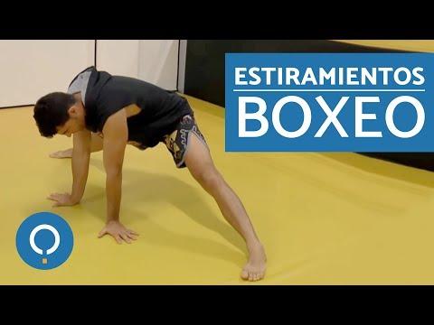 Calentamiento para BOXEO - Clase de boxeo 1