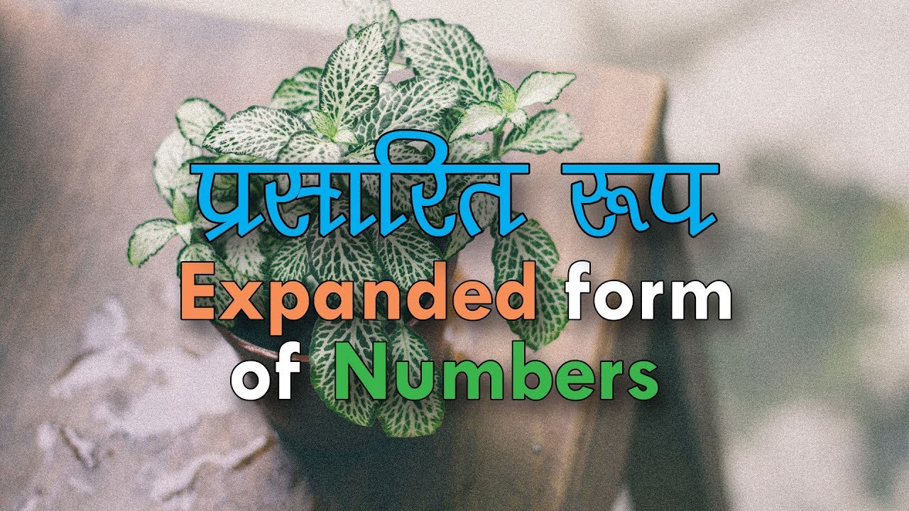Simple maths in hindi expanded form of numbers youtube simple maths in hindi expanded form of numbers falaconquin