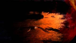 Nỗi đau từ đấy-Ngô Thụy Miên-Lê Thành