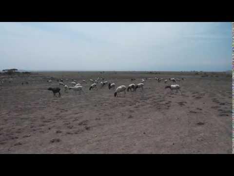 Boda boda across the Masailand in Tanzania