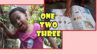 SEKOLAH MANDIRI-Berhitung Angka Inggris-Indonesia-Arab | Membaca buah | Learn Numbers and Fruit Name