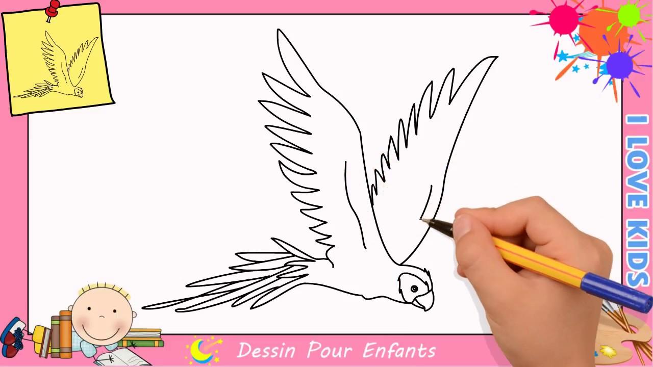 Comment Dessiner Un Perroquet Qui Vole Facilement Etape Par Etape 2