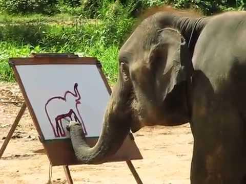 Слон рисует слоненка