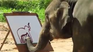 Слон, который рисует слона(, 2014-06-29T10:09:59.000Z)