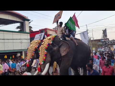 Pattambi Nercha 2017 Elephant Fest