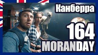Moran Day 164 - Канберра (столица Австралии)