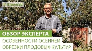 видео Обрезка яблонь когда лучше осенью или весной