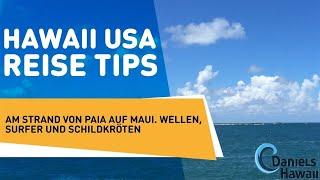 Hawaii USA Reise Tips: Am Strand von Paia auf Maui. Wellen, Surfer und Schildkröten.