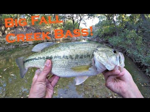 Big Fall Bass Fishing @ White Rock Creek