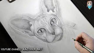 Как нарисовать кошку породы Сфинкс карандашом поэтапно🎨