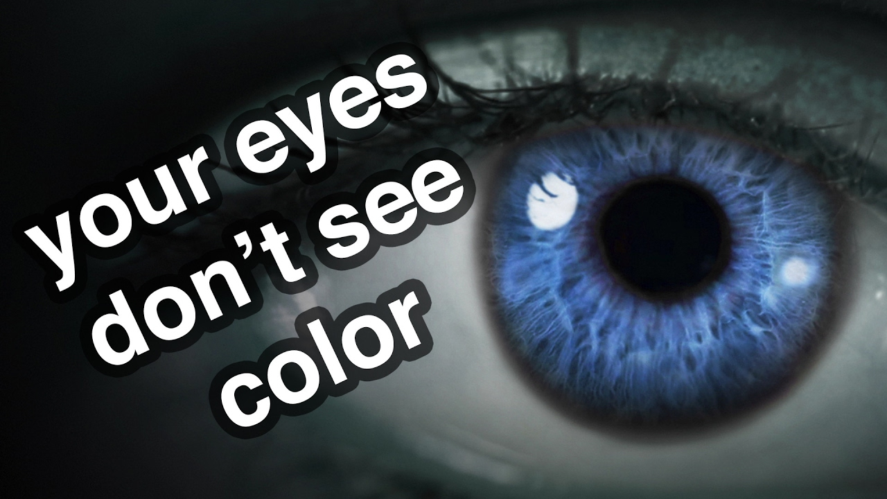 Your Eyes Don't See Color
