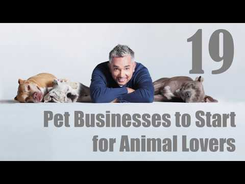 19 Pet Businesses to Start for Animal Lovers | Sameer Gudhate