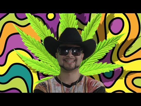 Maria Juana Official Music Video - Chingo Bling, Baby Bash, Down AKA Kilo, Big Tank Boss