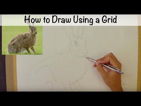 Draw an Outline Using a Grid