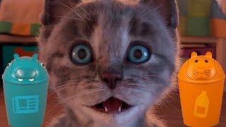 Fun Play Cat Pet Care Game For Kids - Little Cute Kitten Preschool Learning Gameplay For Children
