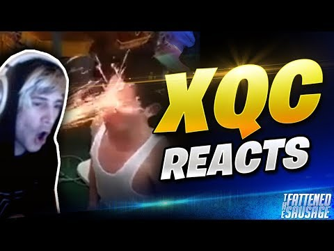 Best Of XQC REACTS To CRAZY Videos w/ CHAT
