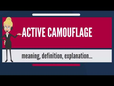 What is ACTIVE CAMOUFLAGE? What does ACTIVE CAMOUFLAGE mean? ACTIVE CAMOUFLAGE meaning