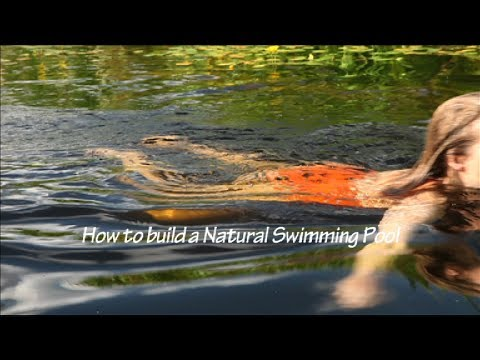 How to build a natural swimming pool shaping the deep - Usa swimming build a pool handbook ...