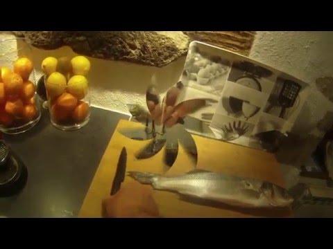 Chasse sous marine Bretagne Nord Cap Fréhel video pédagogique  Partie 3  prépa  poisson &cuisine