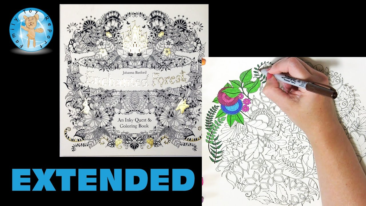 Enchanted Forest By Johanna Basford Adult Coloring Book Owl Extended