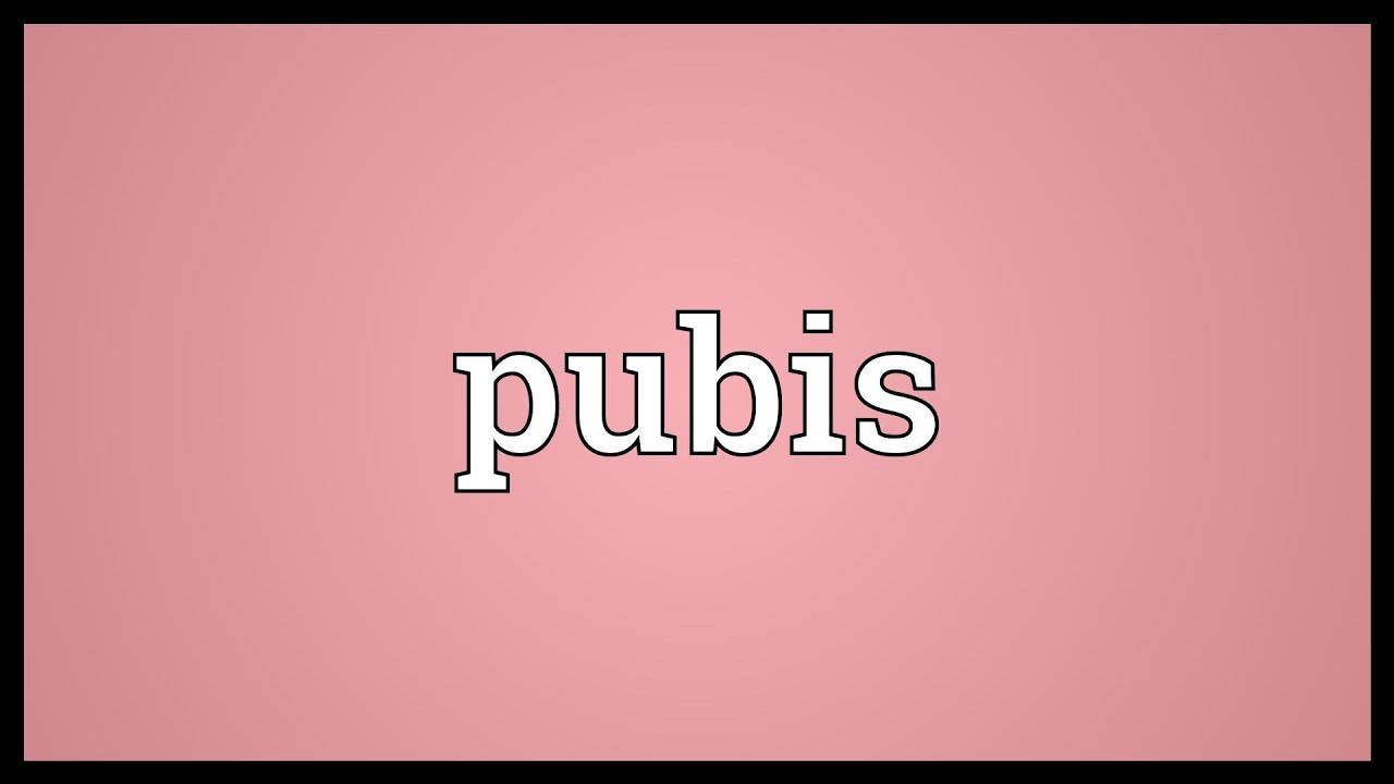 Pubis Meaning - YouTube