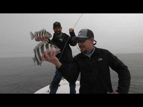 Fishing Offshore Reef In Savannah GA (What The Fin Fishing Team)