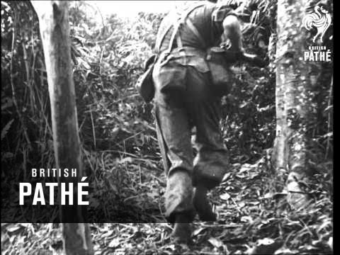 Gordon Highlanders In Malaya (1951)
