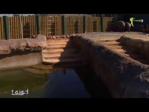 Amouddou -Le jardin zoologique de Rabat أمودّو   ثروة النظم الخمس