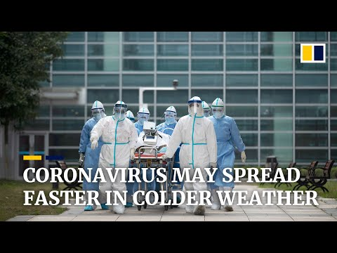Coronavirus 'highly Sensitive' To Warmer Temperatures, Chinese Study Says