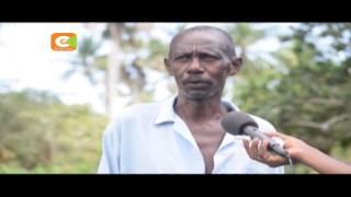 Viwavi jeshi wavamia mashamba Kwale