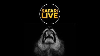 safariLIVE - Sunrise Safari - April 19,...