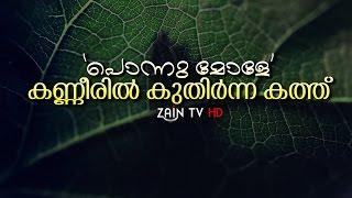 നല്ലോണം ചോക്കുന്ന മൈലാന്ചി | Heart touching Islamic video | Zain TV HD