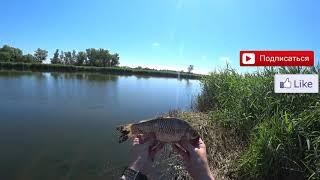 Рыбалка на спиннинги КАРАСЬ ГУСТЕРЯ