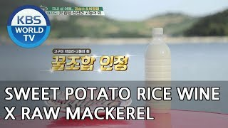 Sweet Potato Rice Wine & Raw mackerel!! YUM!! [Battle Trip/2018.07.01]