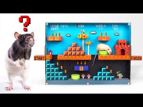Лабиринт для крысы в стиле Супер Марио своими руками