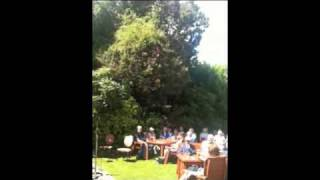 JAZZ in the garden Kirkcudbright 2010