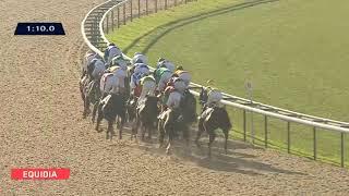 Vidéo de la course PMU PRIX DE LA HAUQUERIE (PELOTON B)
