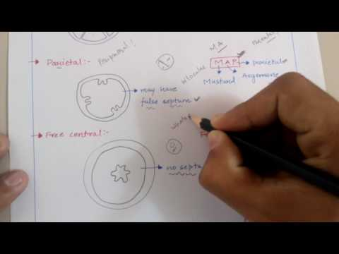 Trick for placentation in flowers( plant morphology) for NEET ,AIIMS ,JIPMER ,KVPY etc. Exams .