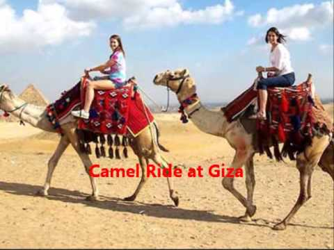 Tours to Cairo from Port Said Port - Shaspo Tours