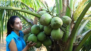 Cooking coconut jelly in my homeland very tasty - Polin Lifestyle